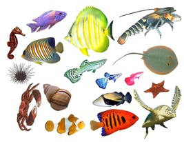 Rockabilly Guitar Cool Fish Tank Waterslide Decals - $7.95