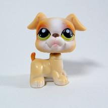 Littlest Pet Shop # 235 Tan Boxer Dog Puppy from Super Surprise Obstacle... - $99,43 MXN
