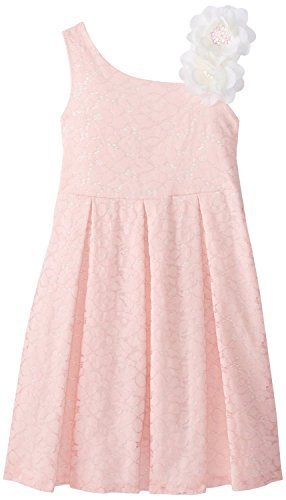Bonnie Jean Little Girls' 2T-6X Pink Lace Dress (4, Pink) [Apparel]