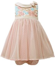Baby Girls Infant Rose Multicolor Embroidered Bow Collar Texture Tulle Dress,...