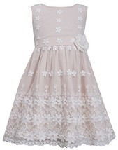 Little-Girls 2T-6X Floral Border Lace Mesh Overlay Dress (5, Pink) [Apparel]