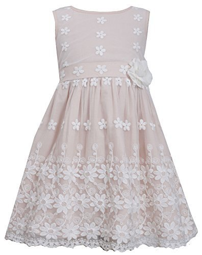 Little-Girls 2T-6X Floral Border Lace Mesh Overlay Dress (6, Pink) [Apparel]