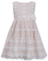 Little-Girls 2T-6X Floral Border Lace Mesh Overlay Dress, Bonnie Jean, Pink, 2T