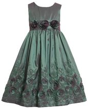 Bonnie Jean Girls 2T-6x Flower Border Sleeveless Taffeta Dress (2T, Teal)