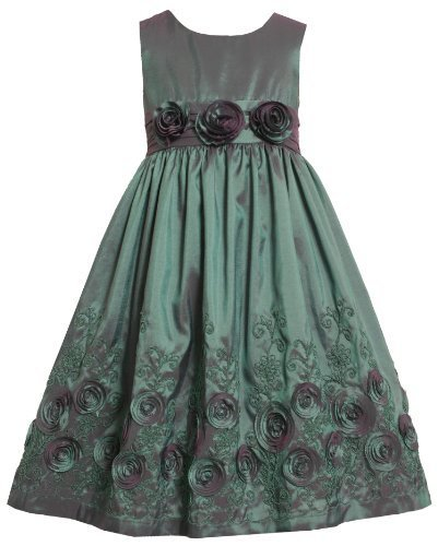 Bonnie Jean Girls 2T-6x Flower Border Sleeveless Taffeta Dress (3T, Teal)