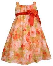 Bonnie Jean Little Girls' Sleeveless Printed Eyelet Dress,Orange,3T [Apparel] image 1