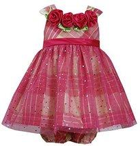 Baby Girls Fuchsia/Multi Spange Mesh Overlay Metallic Plaid Taffeta Dress, Bo...