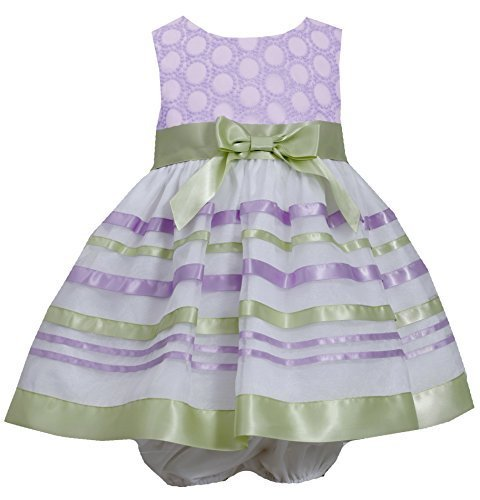 Baby-Girls Infant Embroidered Ribbon Organza Overlay Dress, Bonnie Baby (24 M...