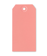Pink Tag 4.75 x 2.375 gift packaging ornament tag 10/pack cross stitch  - $3.00