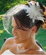Birdcage Veil and Flower Feather Fascinator Bri... - $28.15