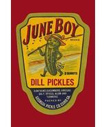 June Boy Dill Pickles #2 - Art Print - $19.99+