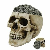 Pacific Giftware PT Erotica Morphing Body Top Skull Box Container Home Tabletop  - $29.05