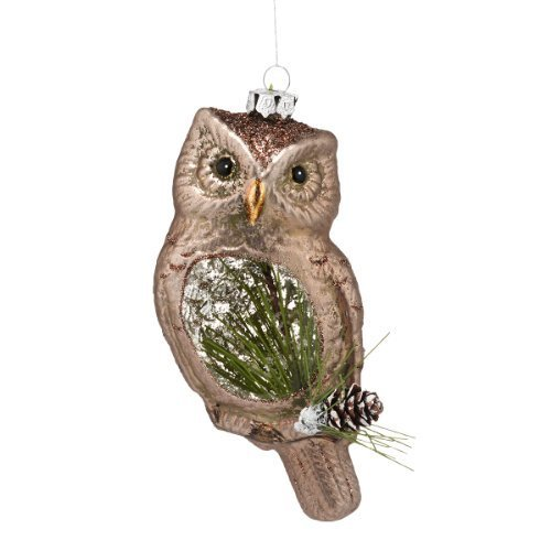 Department 56 Winter's Lodge Frosted Owl Ornament, 6-Inch [Misc.]