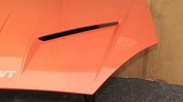 00-04 Ford Focus SVT Cervini's Vented Performance Hood. image 2