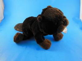Ganz Webkinz Dark Brown Beaver Plush  No Code - $7.29