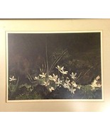 May Day by Andrew Wyeth - $85.00
