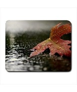 Red Maple In Autumn Mousepad - $7.71