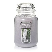 Yankee Candle Large Jar Candle, Silver Birch - $13.83