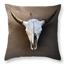 Hanging Skull, Throw Pillow, fine art, home dec... - $41.99 - $69.99