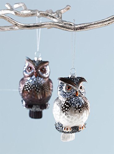Pair of 2 Nature Inspired Owl Glass Ornaments [Kitchen]