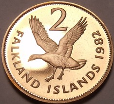 Rare Proof Falkland Islands 1982 2 Pence~Upland Goose~Only 5,000 Minted~Free Shi - $13.36