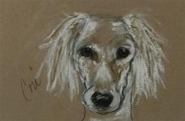 Saluki Dog Art Pastel Drawing Solomon - $50.00