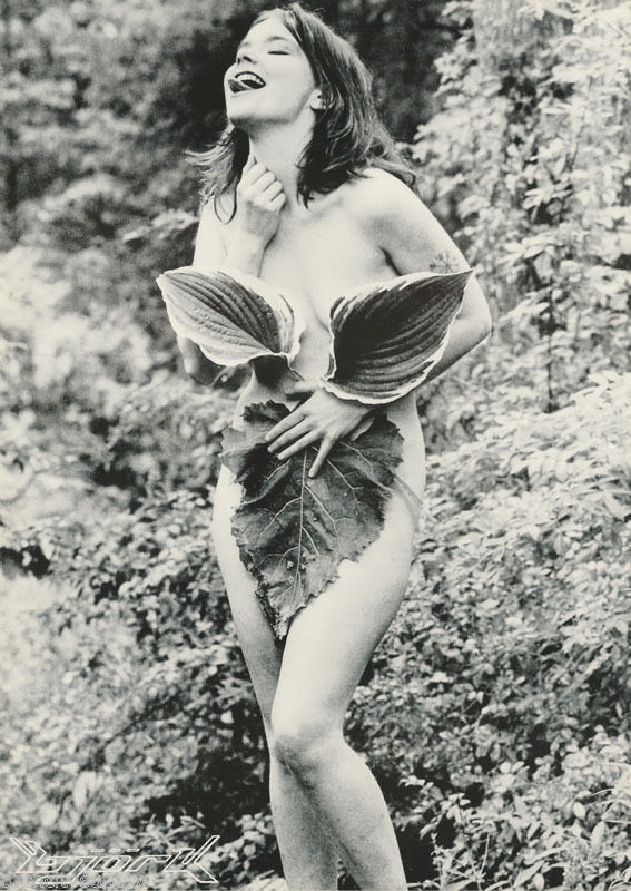BJORK POSTER NUDE 24X34 LEAVES TATTOO TONGUE OUT OF PRINT VERY RARE ORIGINAL