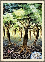 Connect to Mother Nature! Be One with Dryads Nymphs Sprites & Water Spir... - $29.99