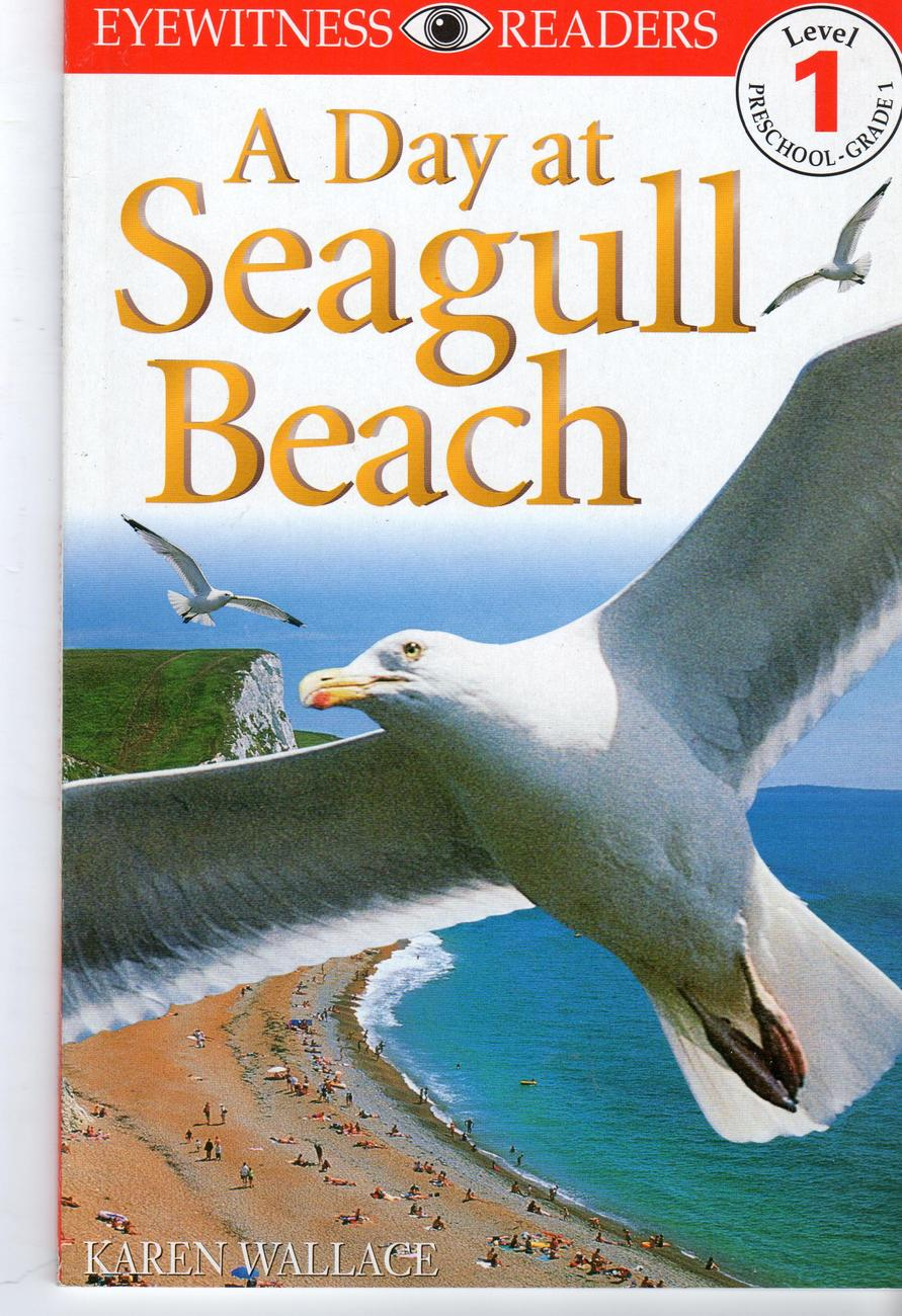 Primary image for A Day At Seagull Beach