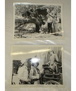 Gene Autry 2 Original 8x10 Photos - $25.46