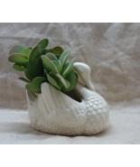 Vintage Mid Century White Ceramic Swan Planter // Retro Home Decor - $12.00