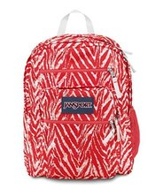 JanSport Big Student Backpack - Coral Peaches Wild at Heart - $32.99