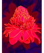 "artPainting, original digital art on canvas ,""Floral essence""-Rene Castillo-Ram - $390.00"