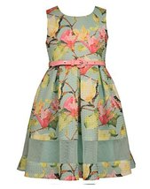 Bonnie Jean Little Girls Floral Puff Print Novelty Dress, Mint, 6X [Apparel]