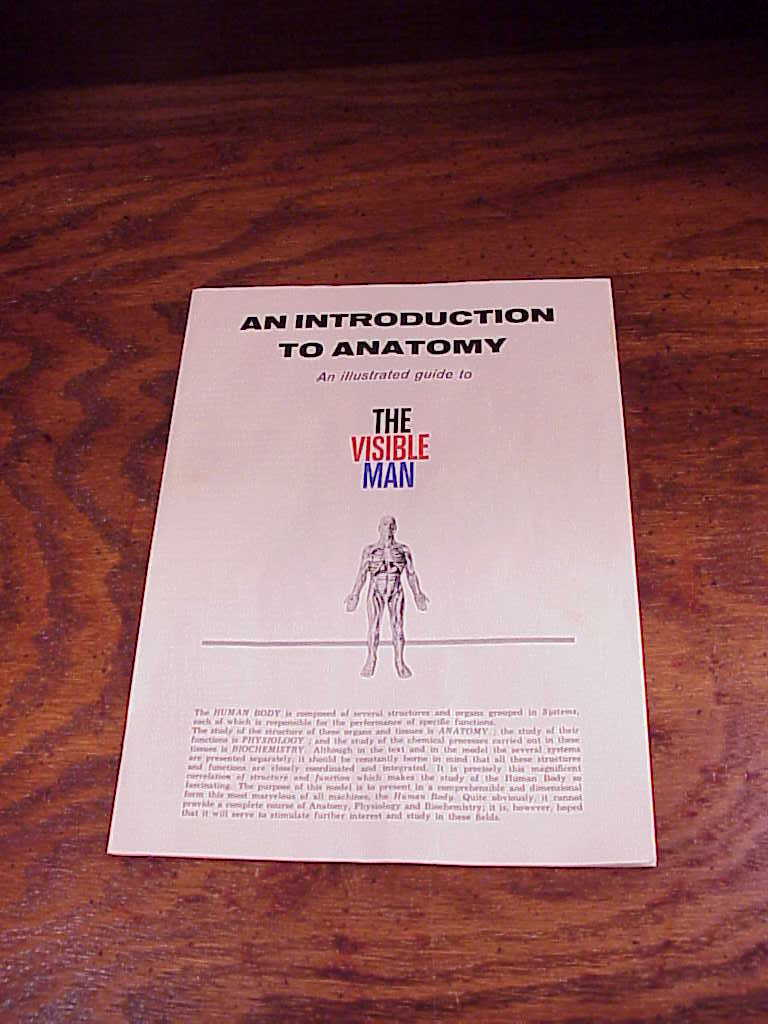 1960\'s The Visible Man Model Kit, for Parts and 50 similar items