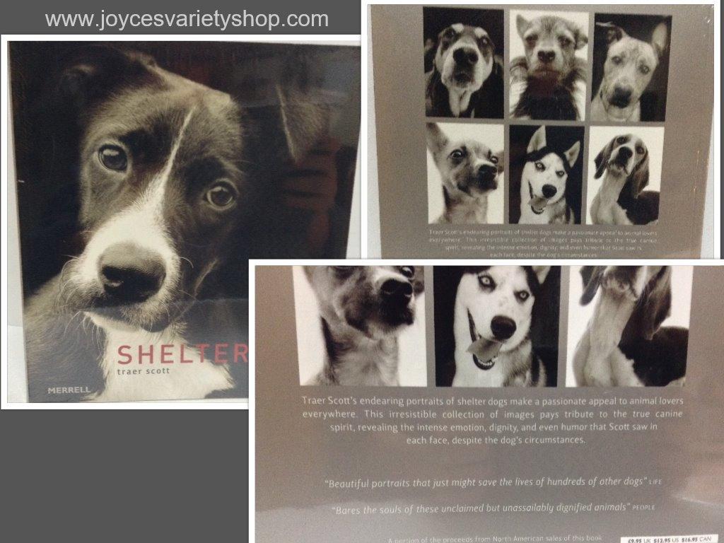 Shelter dog collage