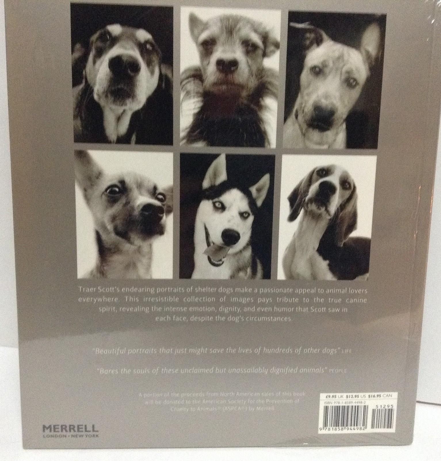 Shelter Dogs Merrell Traer Scott Brand New Sealed ISBN 9781858944082