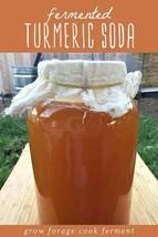 Organic Turmeric Bug - Make Your  Healthy Fermented Turmeric Soda At Home! - $11.88