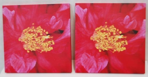 Gift Craft Wild Rose Floral Print Canvas Two Piece Set Colors Pink Red Yellow