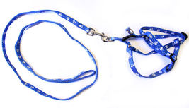 Dog Training Leash Harness Collar Paw Print Rope Long Strap Durable #MCK11 - $10.17