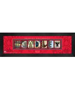 Personalized Bradley University Campus Letter Art Framed Print - $39.95