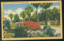 Cultural Garden Gordon Park Cleveland OH Slogan Cancel Air Mail Saves Time - $4.99