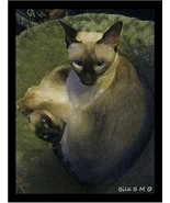"SIAMESE SMOTHERED with LOVE ""Mattugata"" -  Digital generated art print o... - $9.99"