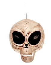 Crazy Bonez Alien Skull - $12.07