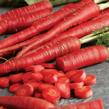 Carrot Seeds - Red - Outdoor Living - Vegetable Seeds -  Gardening Free Shipping - $86.99+