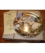 Bradford Exchange Dall sheep plate w/cert/box - $15.45