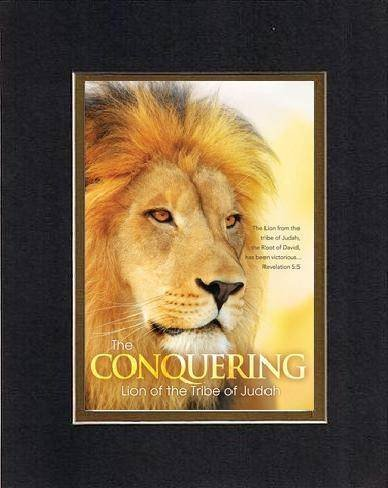 The Conquering: Lion of the Tribe of Judah - Revelation 5 ... Conquering Lion Of Judah