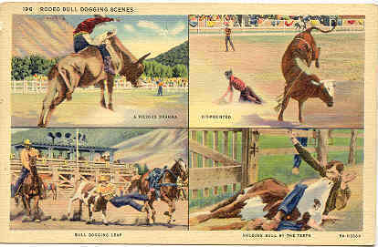 Primary image for Rodeo Multi Views Vintage Post Card