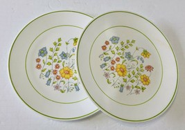 Corelle Two Dinner Plates Meadow Pattern by Corning USA Retired Wild Flowers - $19.79