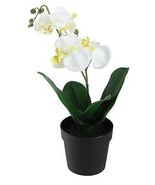 "10.75"" Potted White Phalaenopsis Orchid Artificial Silk Flower Arrangement - $18.75 CAD"